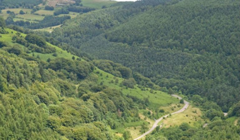 Cwmcarn forest drive  aerial view