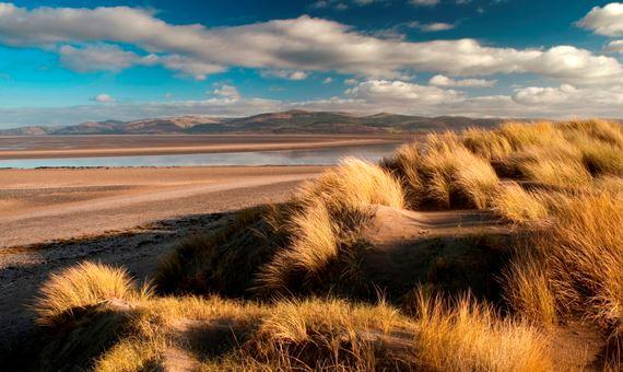 Dunes at Dyfi Ynyslas