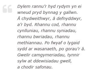 Dylem rannu'r hyd rydym yn ei wneud pryd bynnag y gallwn. A chydweithwyr, a defnyddwyr, a'r byd. Rhannu cod, rhannu cynlluniau, rhannu syniadau, rhannu bwriau, rhannu methiannau. Po fwyaf o lugaid sydd ar wasanaeth, po gorau'r a. Gwelir camgymeriadau, tynnir dylw at ddewisiadau gwell, a chodir safonau