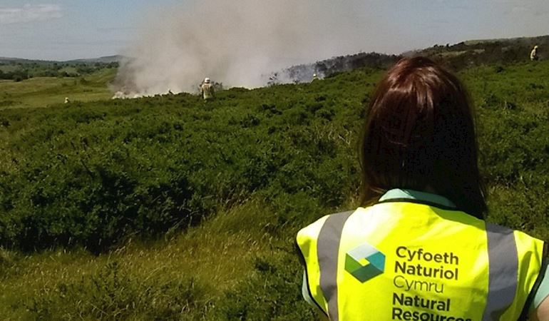 Fire at Halkyn Mountain