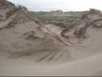 Morfa dyffryn sand dunes