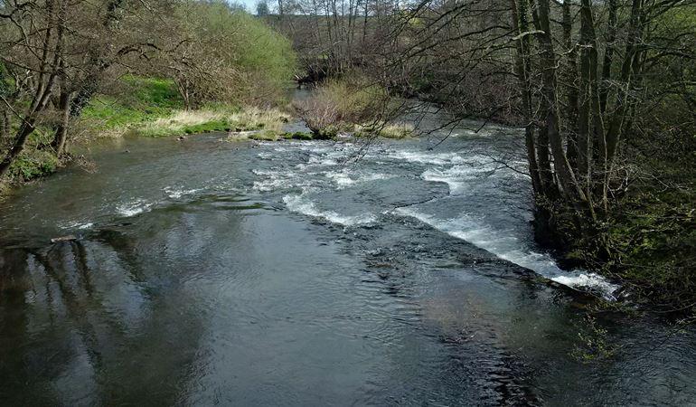River Honddu with slurry pollution