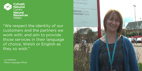 Lyn Williams - We respect the identity of our customers and the partners we work with, and aim to provide those services in their language of choice, Welsh or English as they so wish