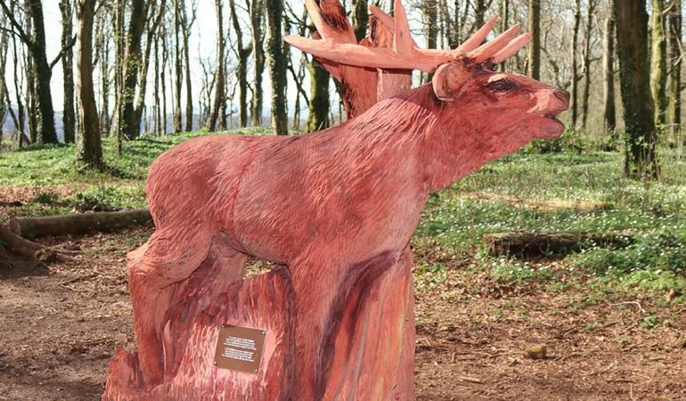 Red deer Fforest Fawr