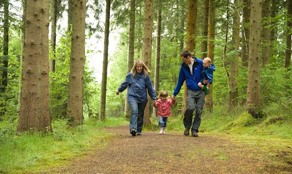 Family on a walk in a woodland