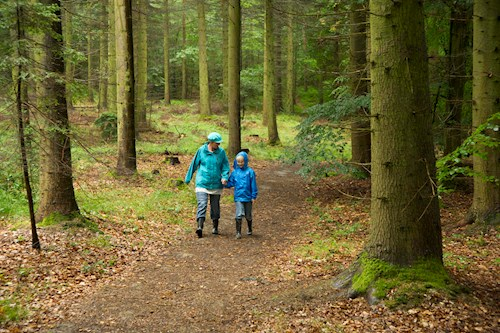 Mother and child walking in woodland