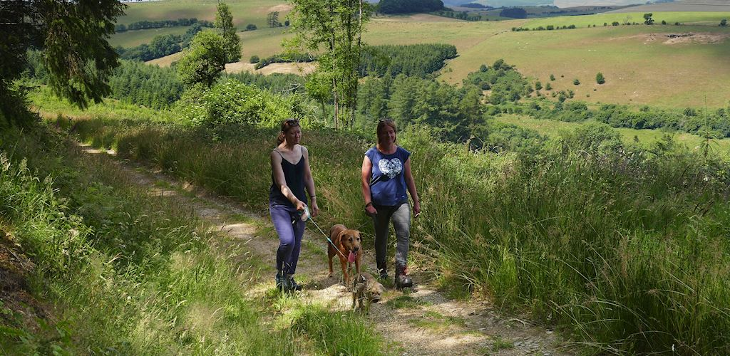 Two women and dogs walking on Fishpools Trail