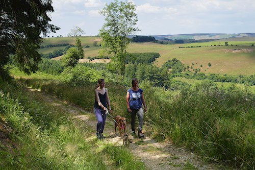 Two women with dogs on Fishpools Walk
