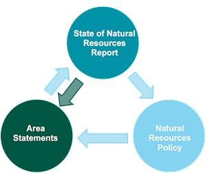 Area statements, SoNaRR and Natural Resources Policy feed into each other
