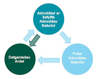 Adroddiad ar sefyllfa adnoddau naturiol, polisi adnoddau naturiol, datganiadau ardal