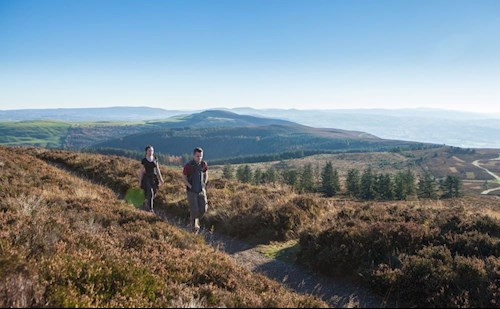 People walking at Coed Moel Famau Forest, near Mold