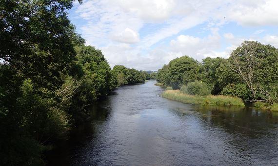 Golygfa o Bont Dyfrdwy ar yr Afon Dyfrdwy yn dangos cynefin dôl