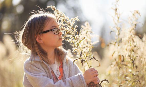 girl holding dried flower head growing in field
