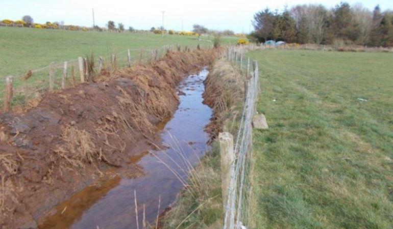 damage to water vole habitat Ynys Mon