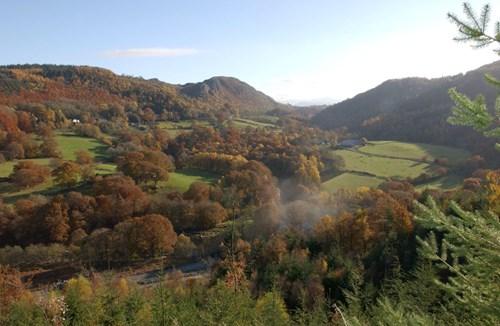 Gwydyr forest park, Coed y Mynydd