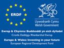 Logo for Welsh Government and ERDF Funding. Logo cyllido Llywodraeth Cymru a CDRE