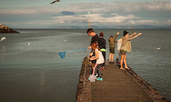 family crabbing on a pier