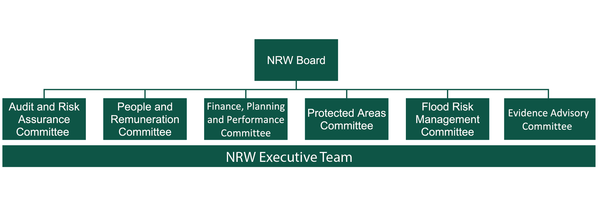 Our governance structure diagram. Details explained in surrounding text.